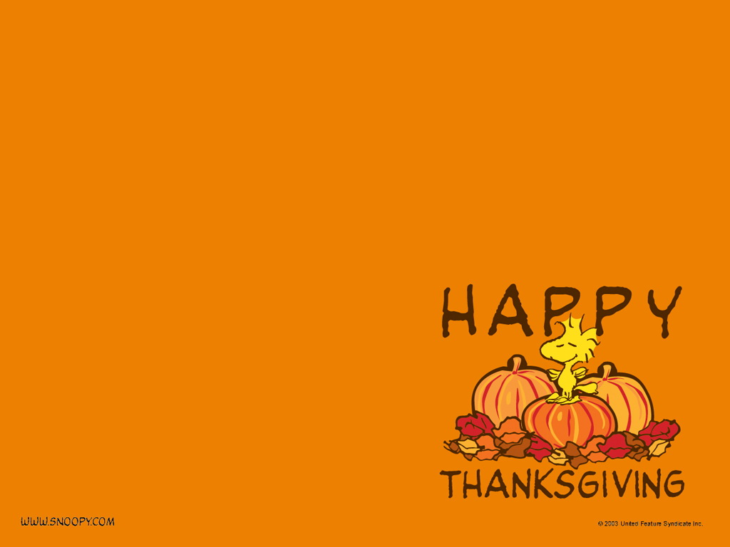 free fun thanksgiving wallpapers - photo #37