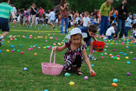 Easter Day Video Downloading And Video Converting Free Zone