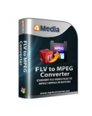 4Media FLV to MPEG Converter