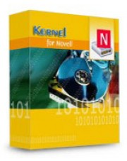Kernel Recovery for Novell NSS