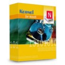 Kernel Recovery for Novell Traditional